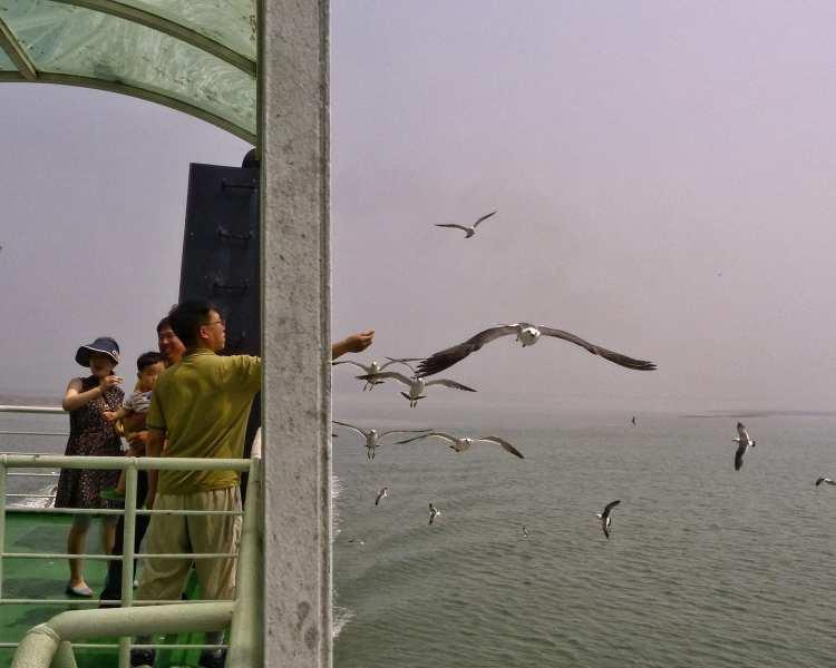 Ferry Yeongjong