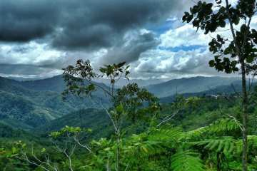 Cycling Borneo pt1: from Kota Kinabalu to Tenom, climbing the Crocker Range 20