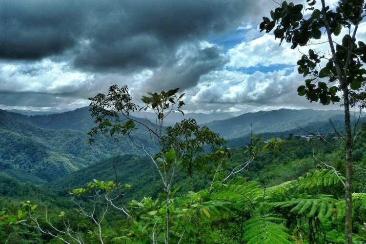 Crocker Monti Sabah Borneo