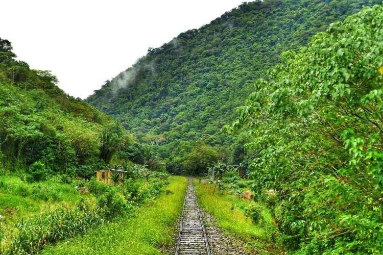 Train Borneo Tenom