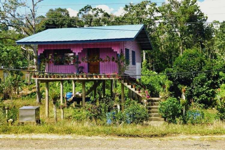 tipical malay house