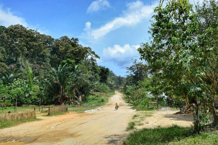 confine Sarawak - Kalimantan