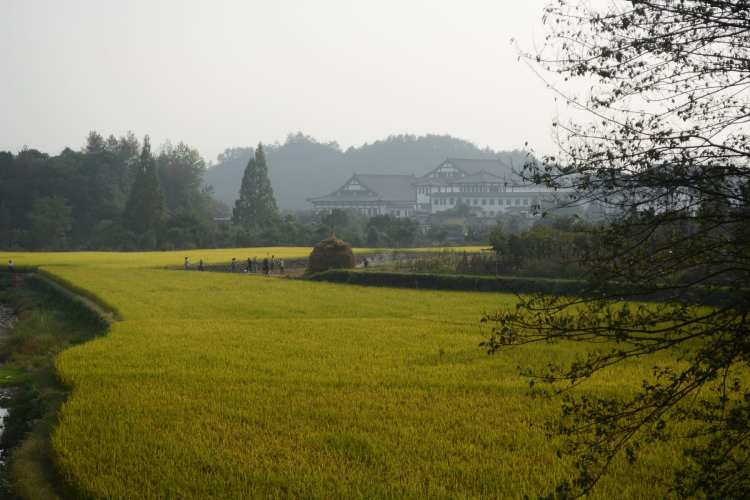 things to do zhejiang