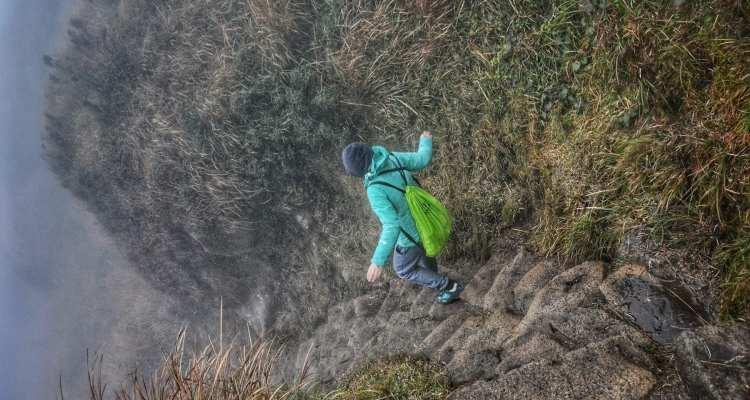 Yangmingshan hiking