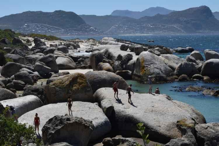 Città del Capo, Cosa Vedere nella più Bella Città Africana 21