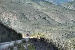 Knysna mountain bike
