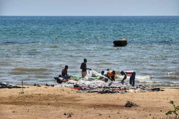 bliharzia lago malawi