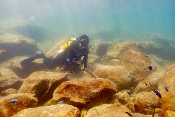 Diving Lake Malawi