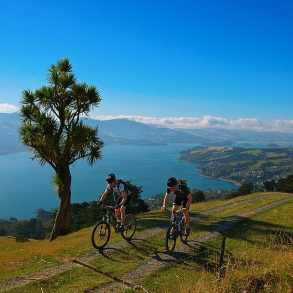 7 Popular Cycling Destinations in New Zealand 12
