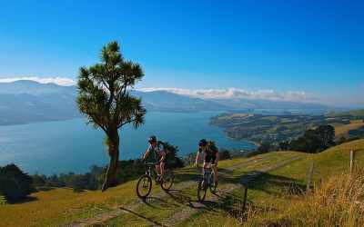 7 Popular Cycling Destinations in New Zealand 20