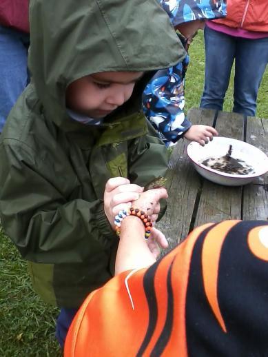 touching frog