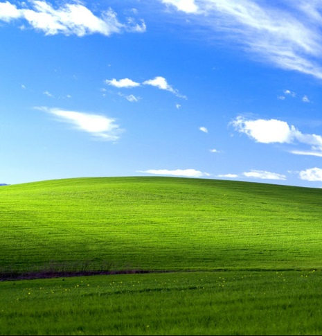 The Story Behind Windows XP Wallpaper
