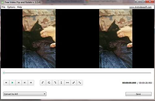 video-flip-loaded.jpg