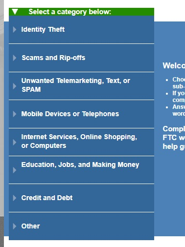 report-govt-fraud-details-category.jpg