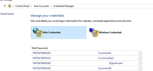 credential-manager-opens.jpg