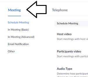 select-the-meeting-tab