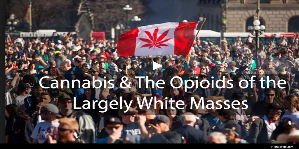 Cannabis and the Opioids of the Largely White Masses