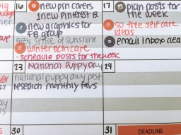 the content planner. Lines filled in with plans for the blog