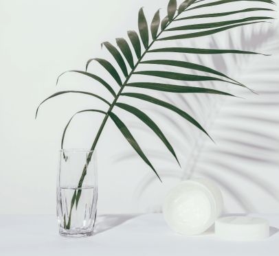 palm leaf in a glass jar with water