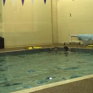 Andrew - Swim A