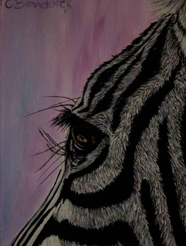 Zebra - Oil painting. details. Cynthia Bandurek
