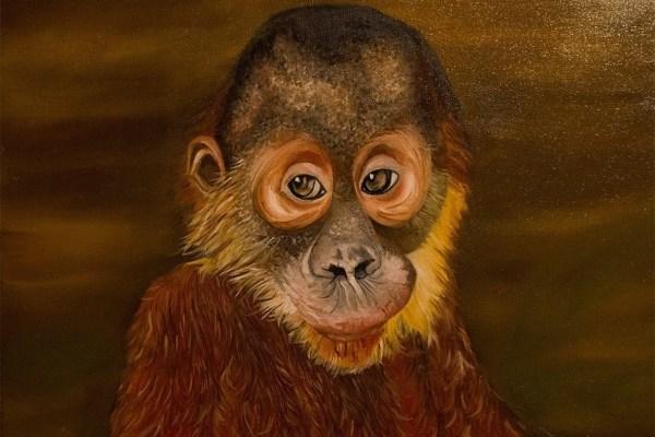 Oil painting - Orangutan - Cynthia Bandurek