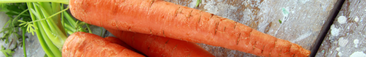 Click here to view a variety of carrots you can plant in your spring/fall garden