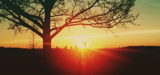 Pittsburgh from Schenley Park