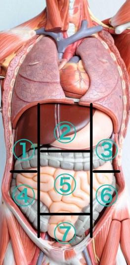 左下腹部の痛みの原因