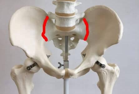 仙腸関節の位置を図で解説!痛みの原因や治療法とは?
