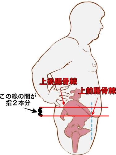 上前腸骨棘 上後腸骨棘
