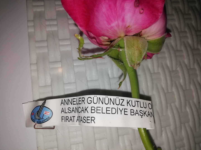 En blomma från borgmästaren