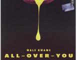New Music + Video: Wale Kwame – 'All Over You' feat. Davido x Kwesi Arthur