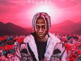 {Music} Picazo - Rest Of Mind