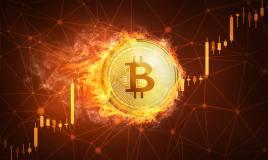 Bitcoin Cash (BCH) mostró un gran crecimiento en la primera…