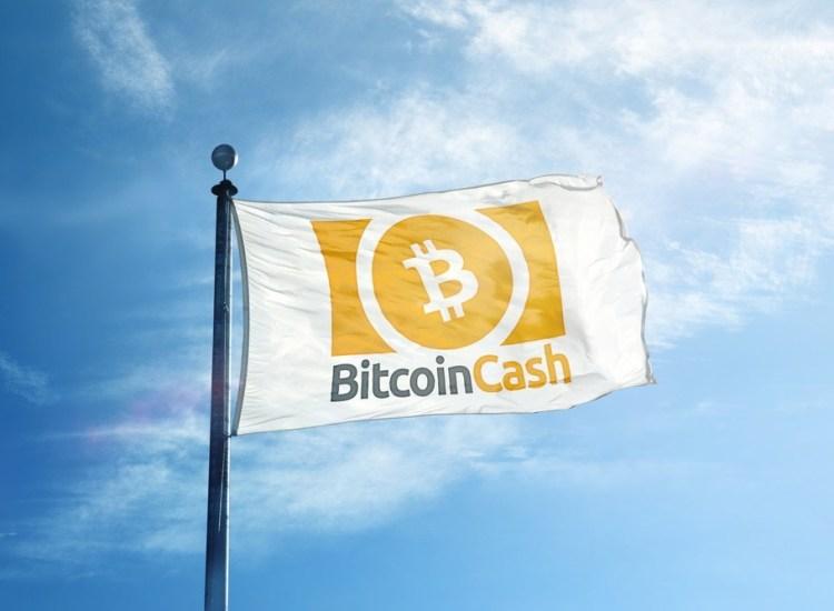 Bitcoin Cash (BCH) ahora posee la segunda cadena más valiosa del mercado