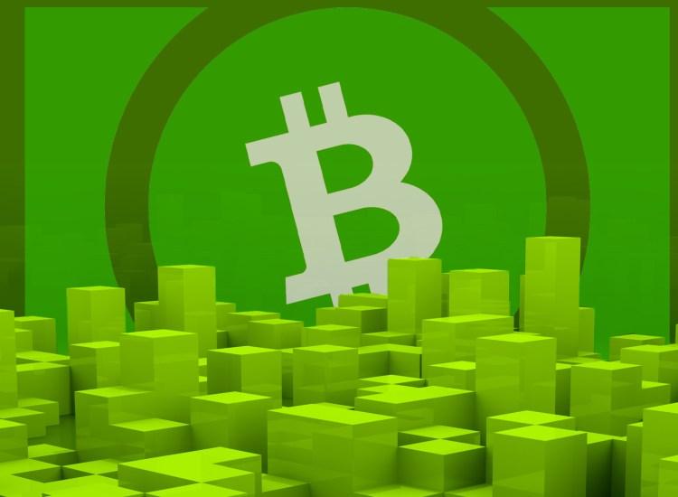 Desarrollador de Bitcoin ABC opina sobre el plan de financiamiento para Bitcoin Cash (BCH)