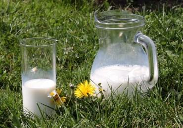 Unia zapłaci za mleko i owoce dla uczniów w szkołach