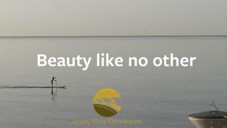 Arany View Developers