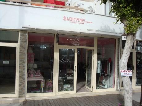 Bluevine Fashion Little House