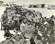 1. Pack Mules Cyprus Regiment Greece WW2