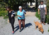 Carole Widdison is out walking the dog
