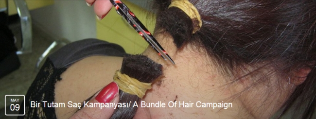 A Bundle of Hair 1