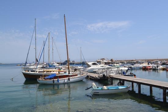 A splendid harbour view