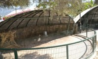 Baris Park Zoo