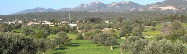 Buyukkonuk - Picture courtesy Eco Tourism Cyprus