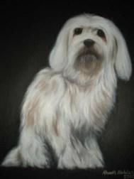 Painting - dog