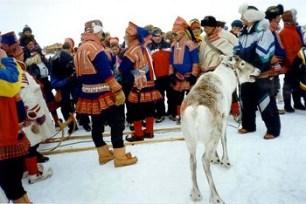 Arctic Circle_3