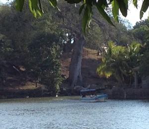 One of the islands on Las Isletas tour Granada