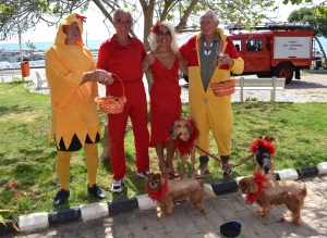 The Lady and Lad in Red with dogs and chickens